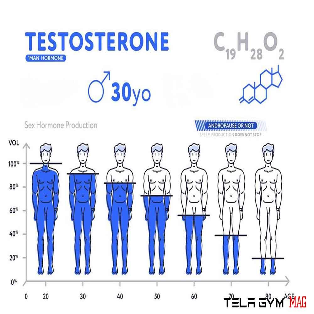 هورمون تستوسترون چیست عوارض و فواید